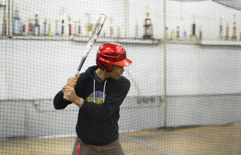 Flags & Wheels Batting Cages Gallery Image